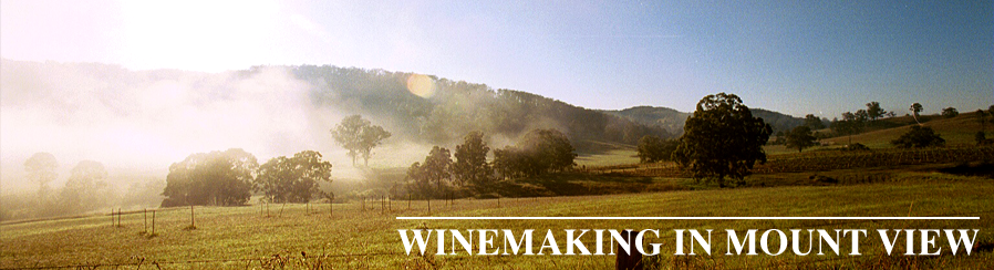 header-winemaking-mount-view